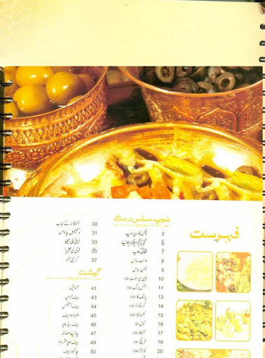 dalda recipe book in urdu